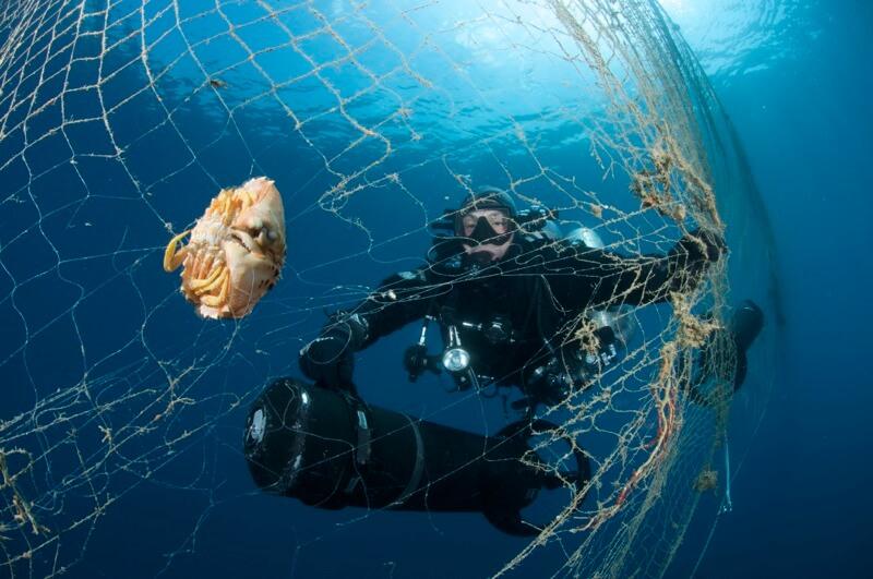 Immersioni di pulizia dei fondali a Portofino